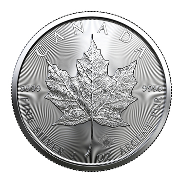 Investmentpaket - 1 Tube Maple Leaf Silber 2021 - 25 Unzen